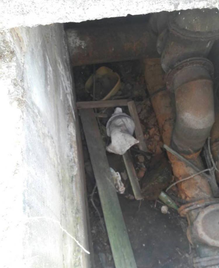В Голой Пристани из колодца достали мешок с собакой